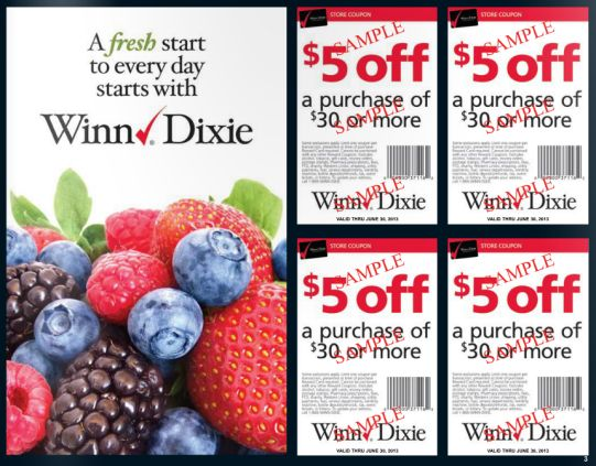 GIVEAWAY~  Enter to Win FIVE (5) Enjoy the City Coupon Books! {With (4) Winn Dixie $5/$30 Coupons Inside each Book!}  ~ 2 Winners!