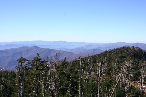 30 Days of Thanksgiving: Day #18 (Coupons and the Mountains)
