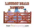 LaundryDealsRoundup