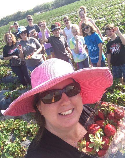 Berry Picking 2014
