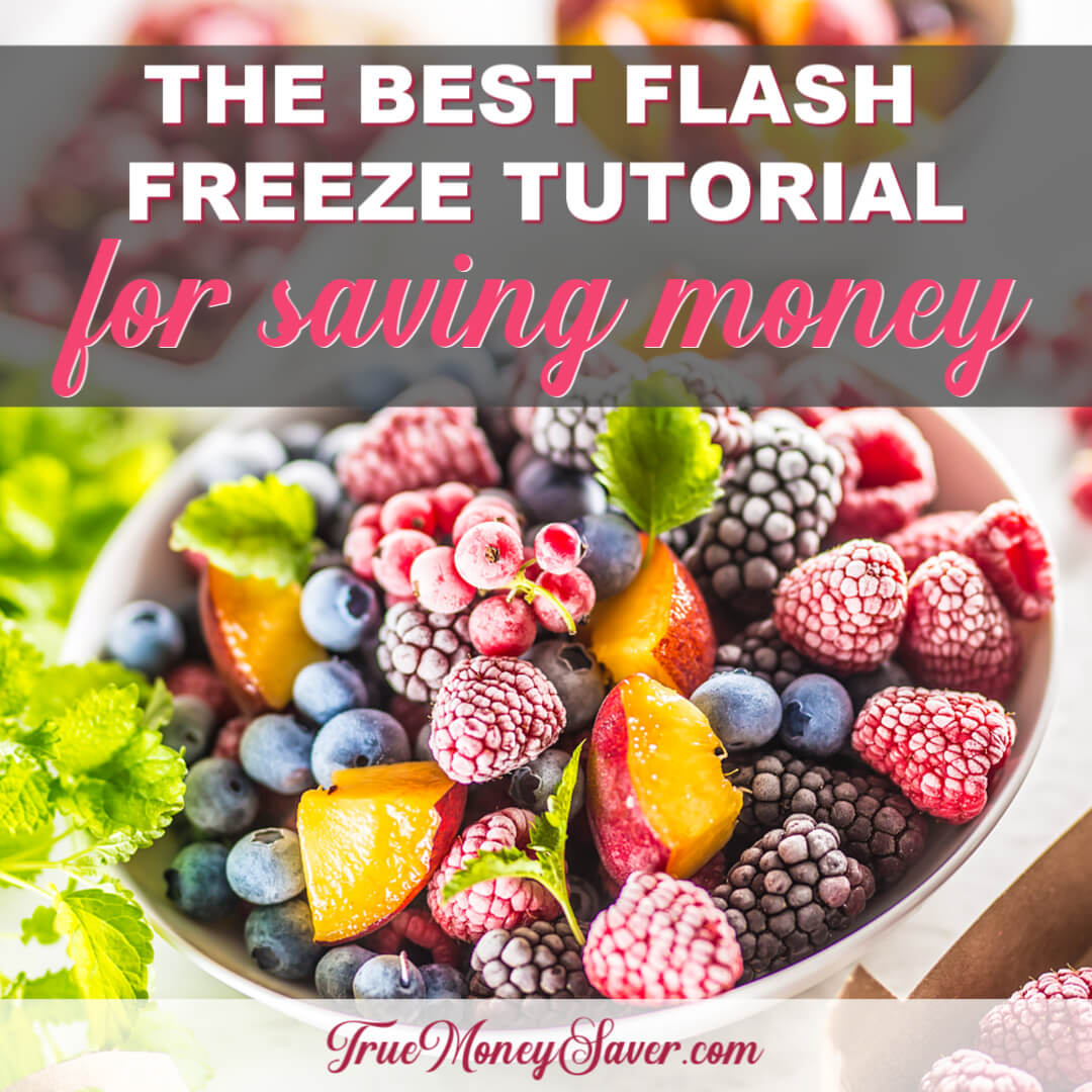 The Best Flash Freeze Tutorial For Saving Money All Year Long