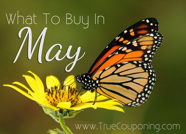 The BEST EIGHT Things to Buy in May
