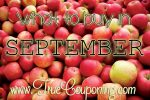 Do You Know What to Buy in September and What to Avoid? We Do!