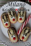 Milano Reindeer Cookies – 12 Days of Christmas Cookies (Day 10)