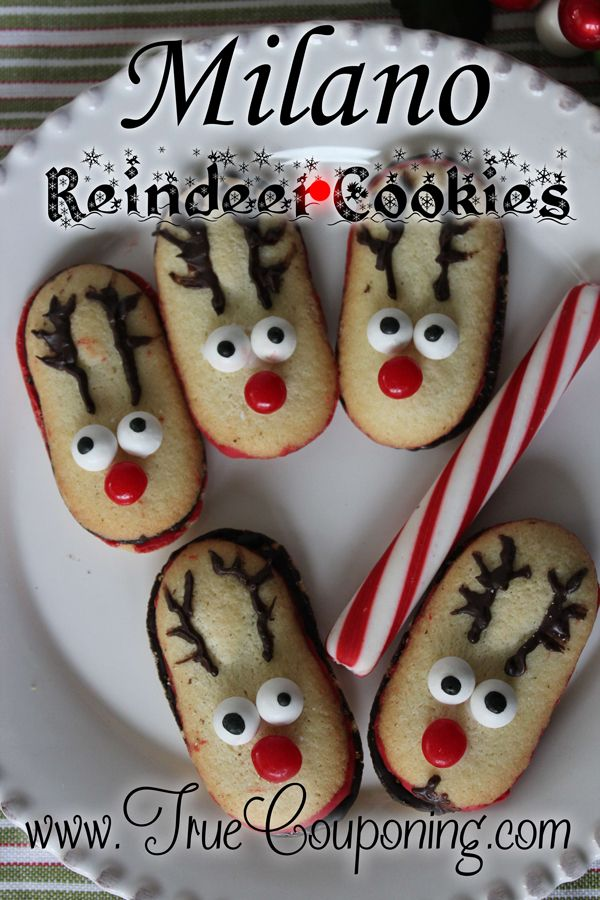 The Cutest Milano Reindeer Cookies You Can Make Today