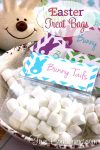 Bunny-Tail-Easter-Treat-Bags