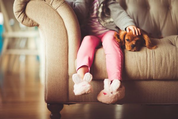Puppy and Girl on Sofa 600