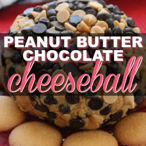 Peanut Butter & Chocolate HEAVEN in the form of a Cheeseball