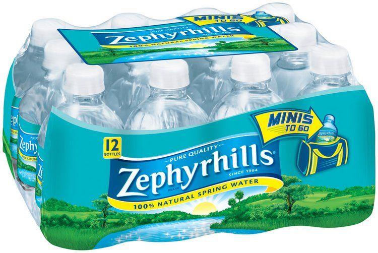 ups zephyrhills fl