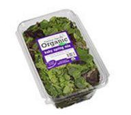 sams salad