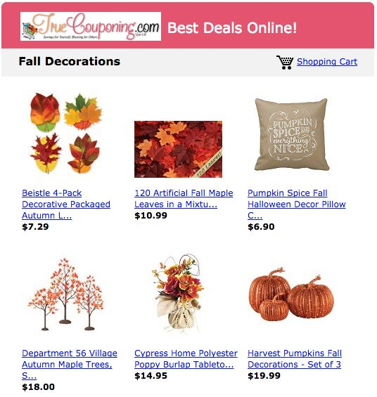 fall decorations astore 9-5