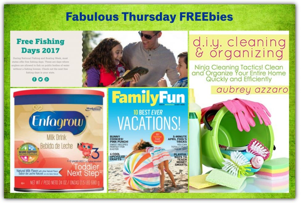 FOUR FREEbies: Annual Subscription to Family Fun Magazine, Florida Fishing Days 2017, Enfagrow Toddler Next Step and DIY Cleaning & Organization eBook!