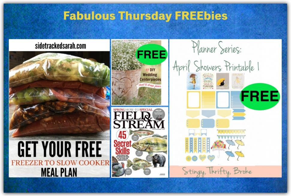 FOUR FREEbies: Annual Subscription to Field & Stream Magazine, DIY Centerpiece eBook, April Showers Bring May Flowers Planner Stickers and Freezer to Slow Cooker Meal Plan!