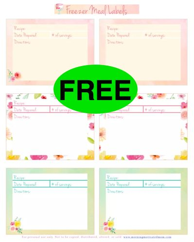 photograph about Printable Freezer Labels named Absolutely free Freezer Food stuff Labels Printable!