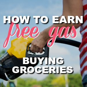 It's Back!! Get FREE Gas At Shell By Shopping At Publix! {15¢ Off Each Gallon!}