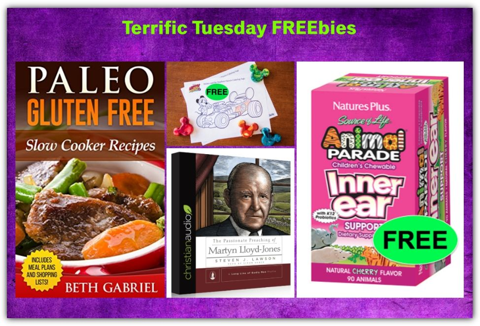 FOUR FREEbies: Paleo Gluten Free Slow Cooker Recipes eCookbook, Christian Audiobook, Mickey Mouse Printable Coloring Pages and Children's Chewable Inner Ear Support!