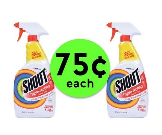 Shout Those Stains Out with 75¢ Shout Stain Removers at Publix! ~ Starts Today!