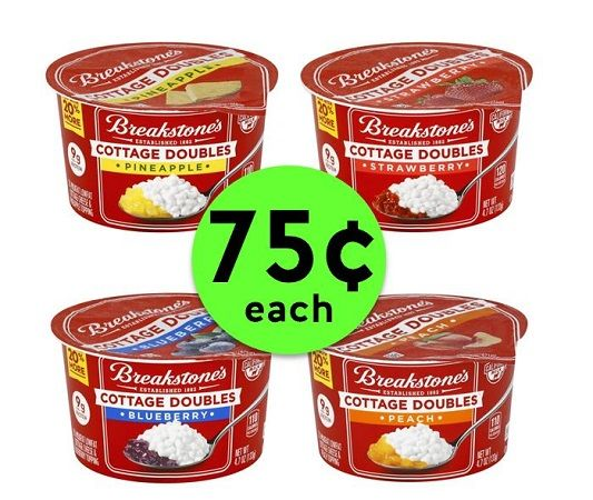 Print NOW for 75¢ Breakstone's Cottage Doubles with Fruit at Publix! ~ This Week Only!