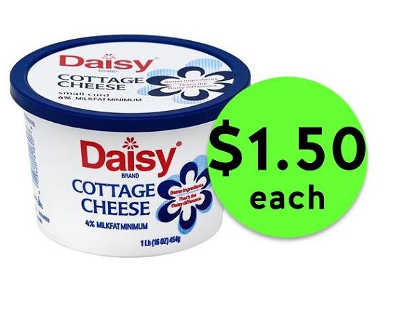 Hurry Into Publix For 1 50 Daisy Cottage Cheese Ends