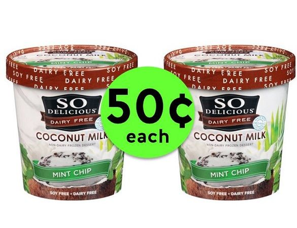 Be QUICK! So Delicious Dairy Free Ice Cream ONLY 50¢ Each at Publix! ~ Ends Friday!