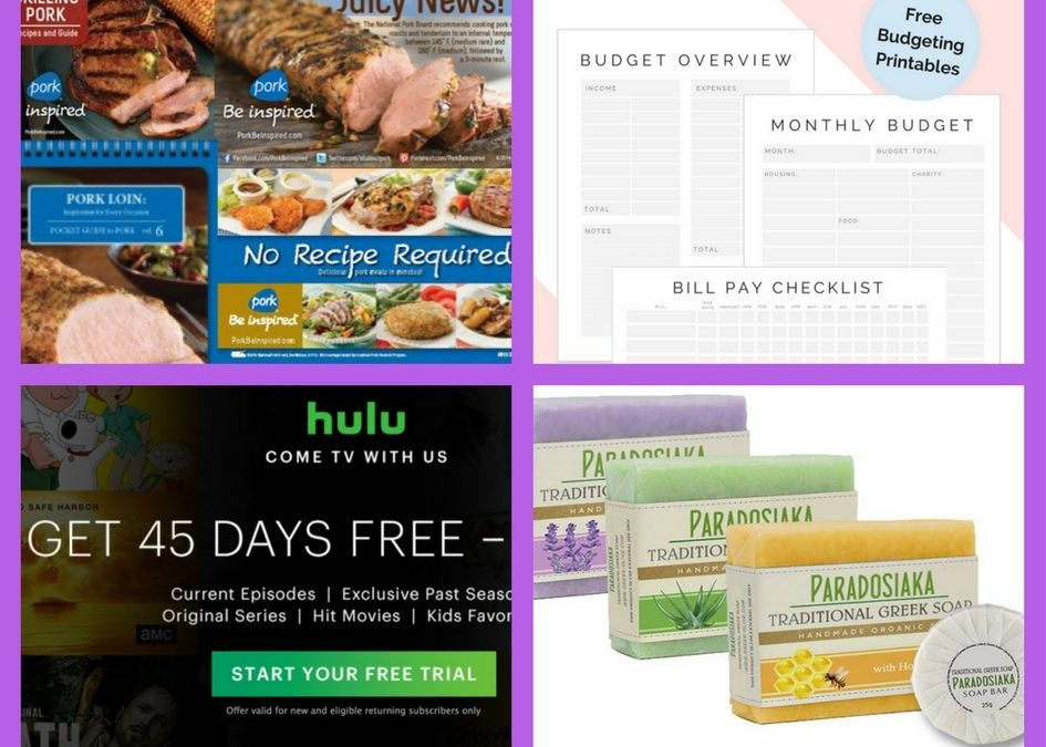 FOUR (4!) FREEbies: Guides to Cooking Pork, Monthly Budgeting Printables, 45-Day Hulu Subscription and Greek Soap!