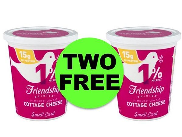 (**Update: NLA**) Don't Miss TWO (2!) FREE Friendship Cottage Cheese or Original Sour Cream at Publix! ~ Ends Tues/Weds!