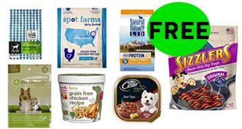 FREE Dog Food and Treats Amazon Box!
