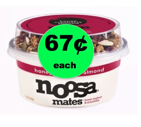 Try Noosa Mates Yoghurt for ONLY 67¢ at Walmart! ~ Right Now!