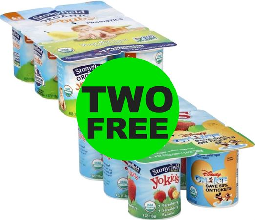 Don't Miss TWO (2!) FREE Stonyfield Organic Yogurt Multipacks at Publix! ~ Ends Tues/Weds!