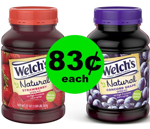 It's PBJ Time! Grab Welch's Jam, Jellies or Spreads for As Low As 83¢ Each at Publix! (Ends 1/23 or 1/24)