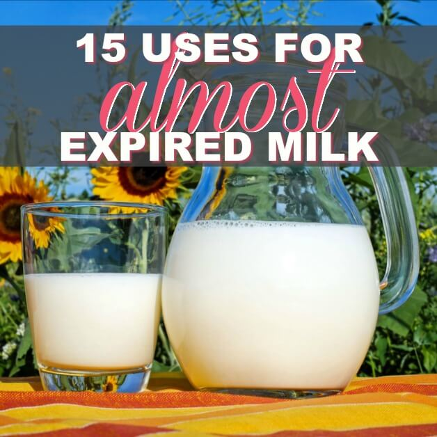 No Waste! 15 Uses for Almost Expired Milk