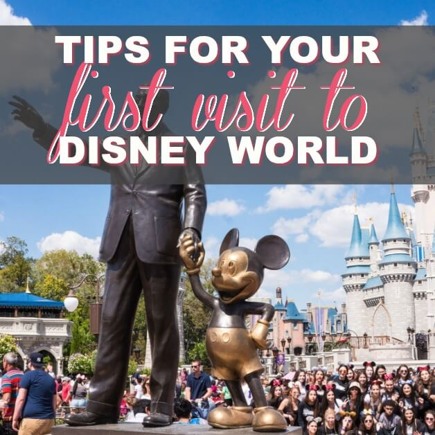 Tips To Get The Most On Your First Disney Dream Vacation
