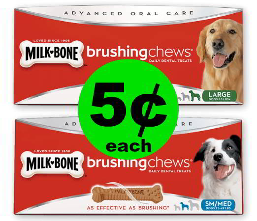Make Your Doggies Happy! Snag 5¢ Milk-Bone Brushing Chews or Good Morning Treats at Publix! Ad Starts Today!