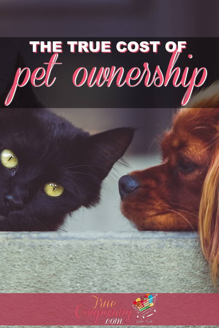 Do you know the TRUE cost of owning a pet? Don\'t say \