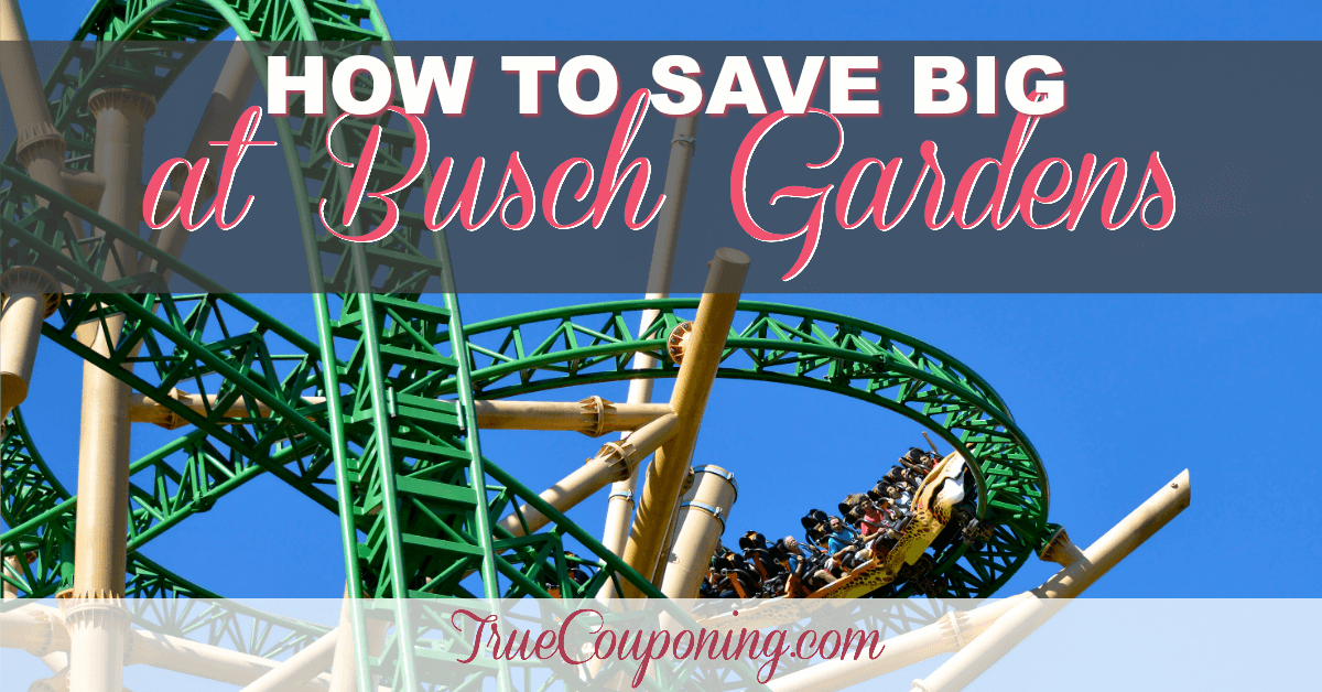 How To Save Big At Busch Gardens Tampa Have Fun Amp Save
