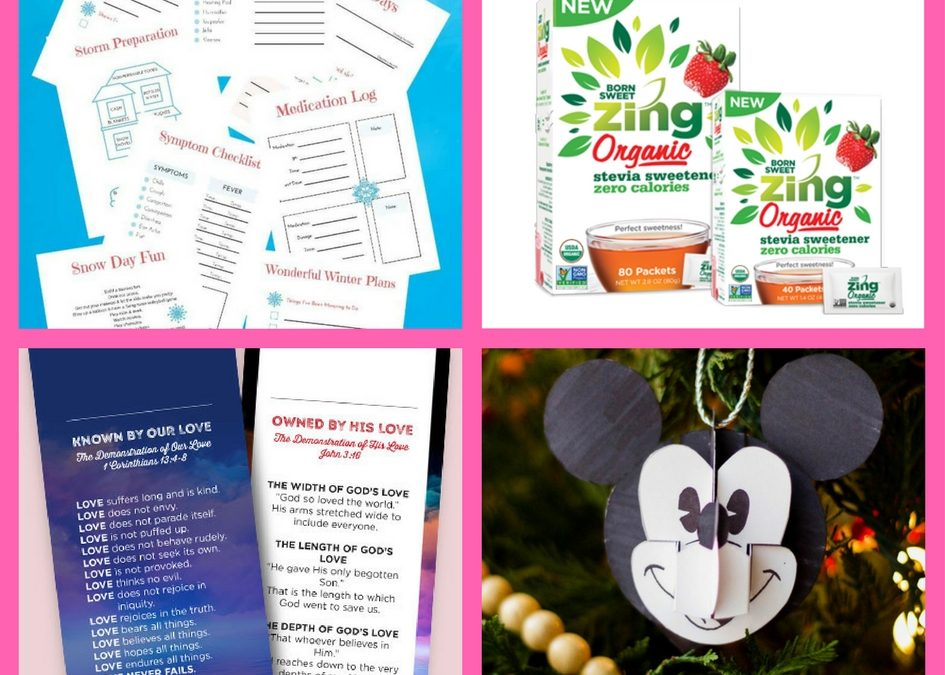 FOUR (4!) FREEbies: Printable Mom's Winter Survival Kit, Born Sweet Zing Sweetener, Love Changes Everything Bookmark and Mickey Pop-Up Ornament!
