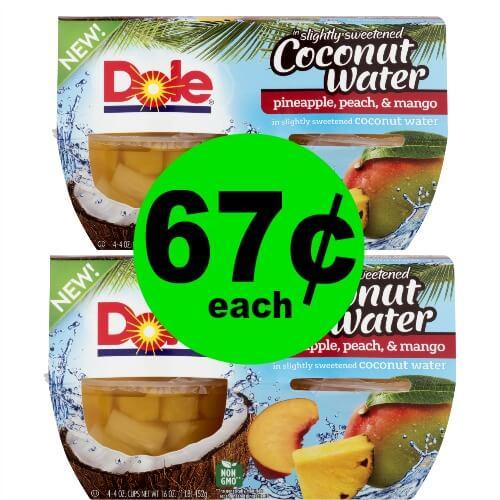 Grab Dole Fruit Bowls for 67¢ Each at Publix! (Ends 1/19)