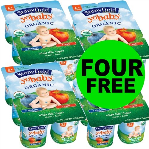 Score Stonyfield Organic Yogurt Multipacks As Low As FOUR (4!) FREE at Publix! (1/20 – 2/2)