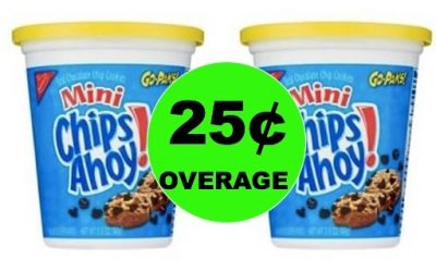 TWO FREE (2!) Nabisco Go Cups + 25 Cents Overage at Winn Dixie! (1/24-1/30)