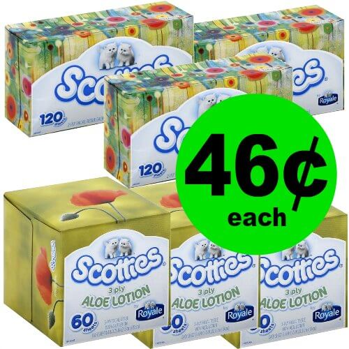 Tackle the Sniffles with 46¢ Scotties Facial Tissues at Publix! (Ends 1/23 or 1/24)