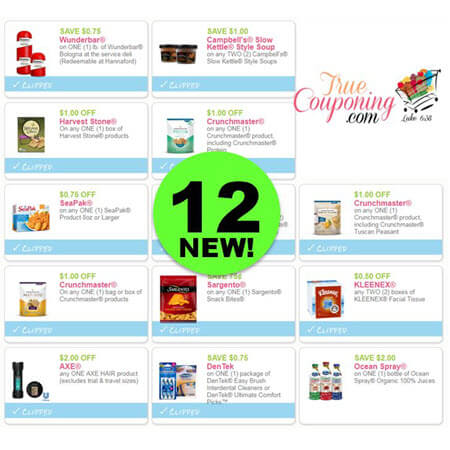 YAHOO! There's Twelve (12!) NEW Coupons Today For Axe, Crunchmaster, Dentek & More!