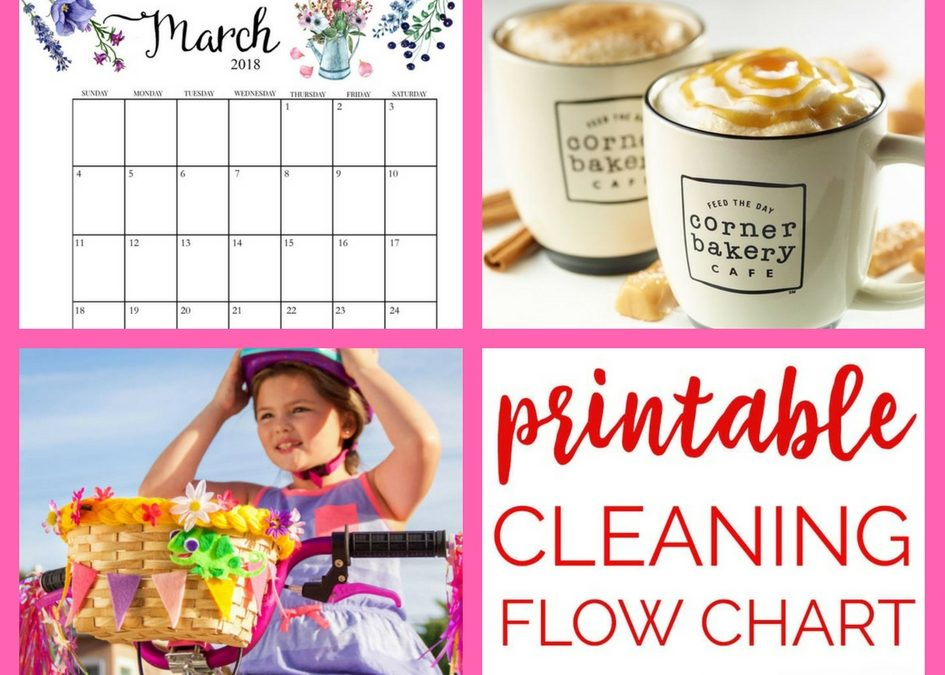 FOUR (4!) FREEbies: Spinach Seeds, Corner Bakery Cafe COffee, Tangled DIY Bike Basket and Printable Cleaning Flow Chart!