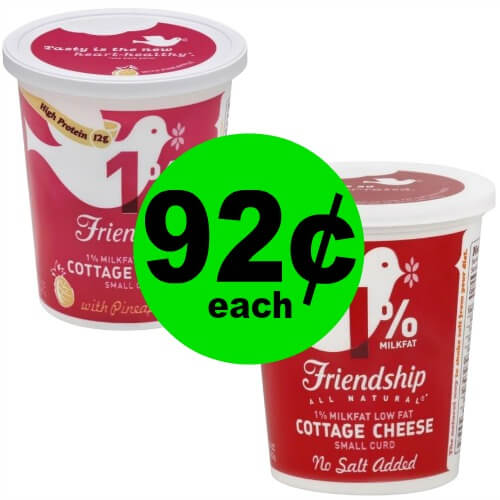 Make Room in the Fridge! Friendship Sour Cream or Cottage Cheese is 92¢ Each at Publix! (3/14-3/16 or 3/15-3/16)