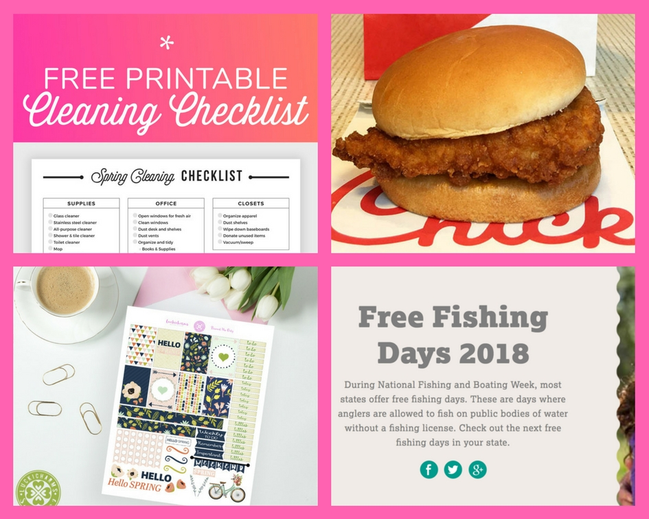 Have You Requested These FOUR (4!) FREEbies: Cleaning ...