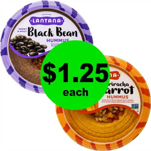 Dig In! Lantana Hummus, $1.25 at Publix! (Starts 6/20 or 6/21)