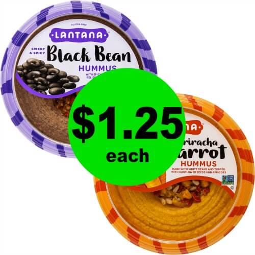 Dig In! Lantana Hummus, $1.25 at Publix! (Starts 6/20 or 6/21)