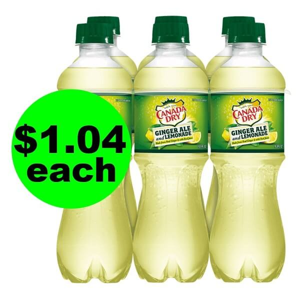 Publix Deal: 🥤 $1.04 Canada Dry 6 Packs (After Ibotta)! (Ends 5/21 Or 5/22)