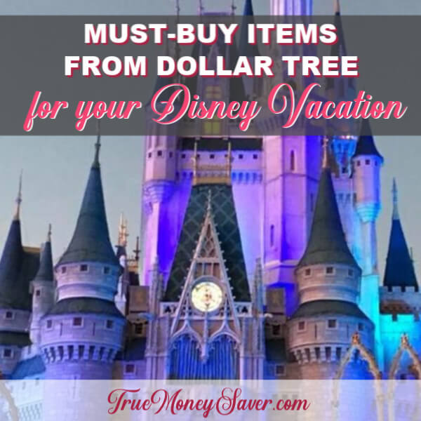 Must-Buy Dollar Store Items For Your Disney Trips