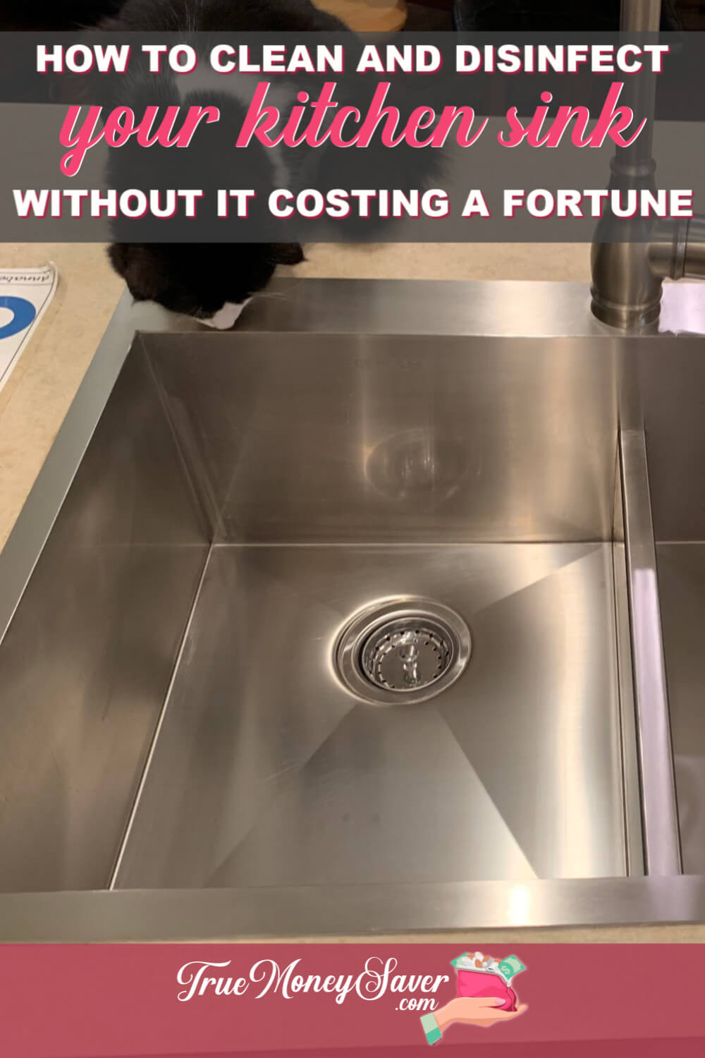 How To Clean Your Stainless Steel Sink And Not Spend A Fortune