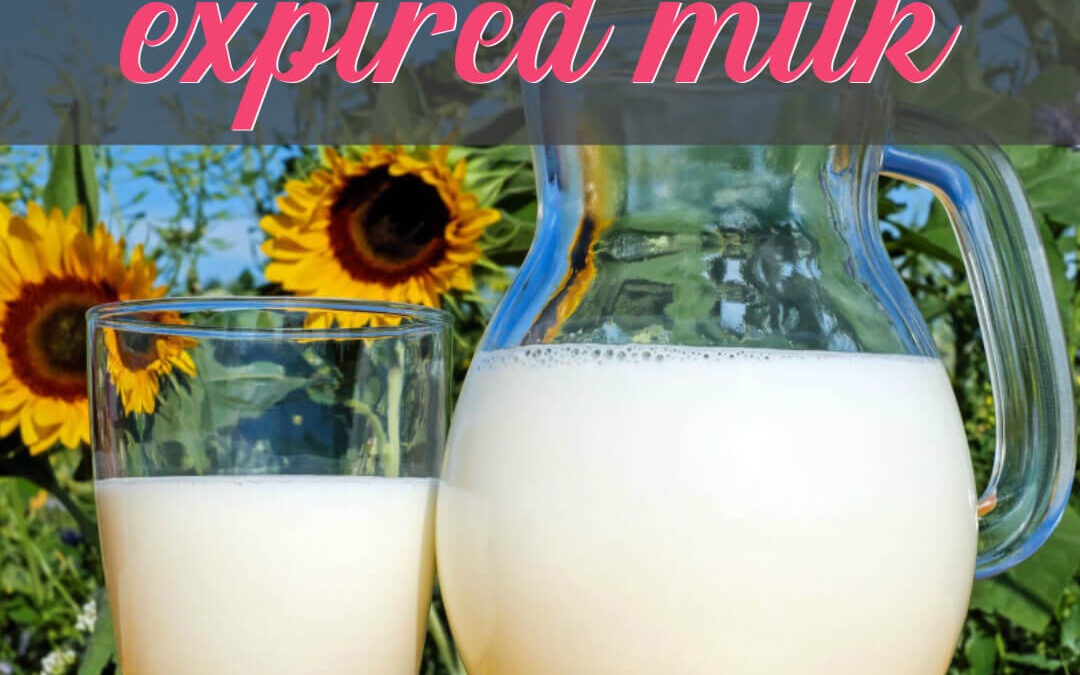 How To Use Up Almost Expired Milk With Over 15 Of The Best Recipes